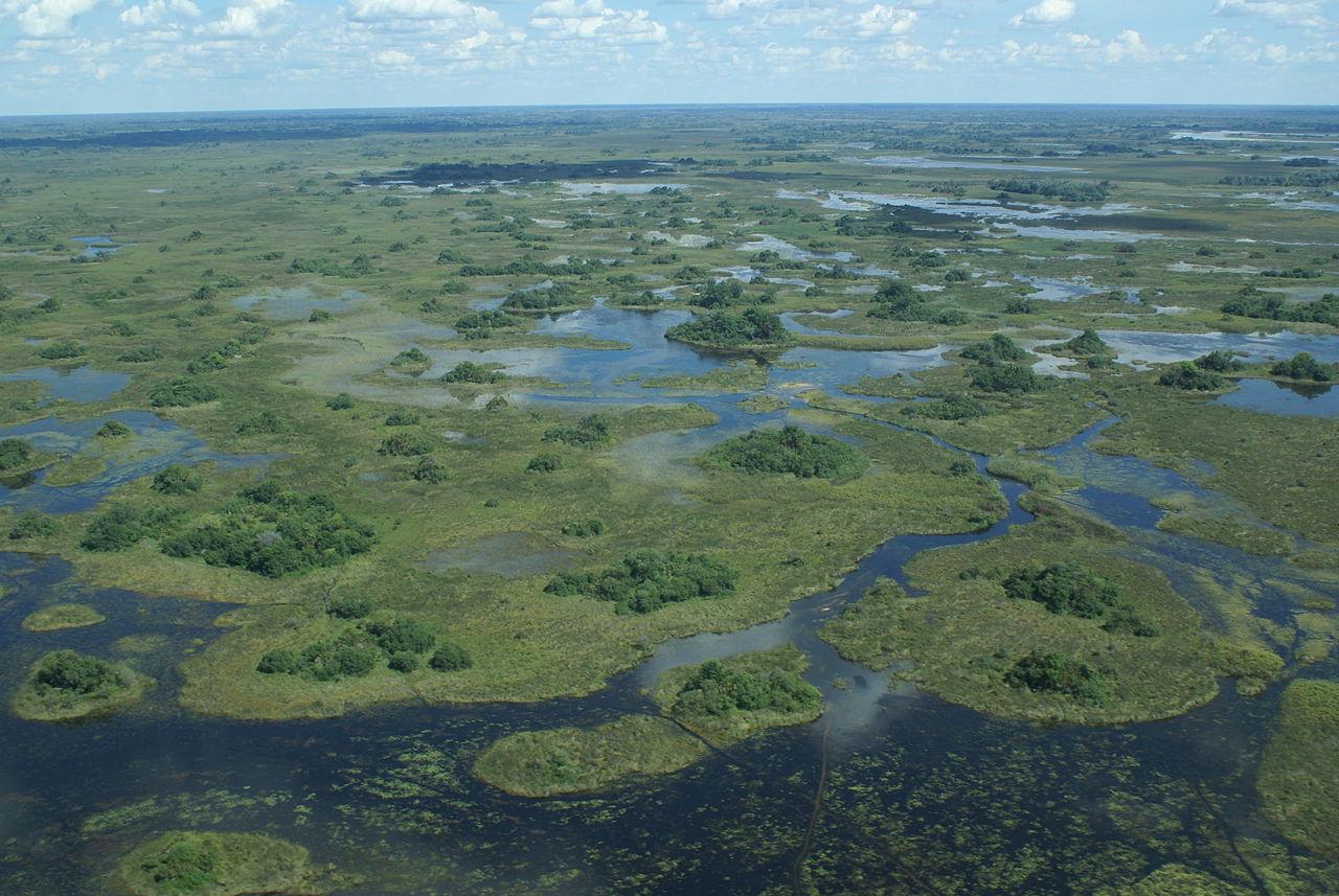 Botswana : Delta de l'Okawango