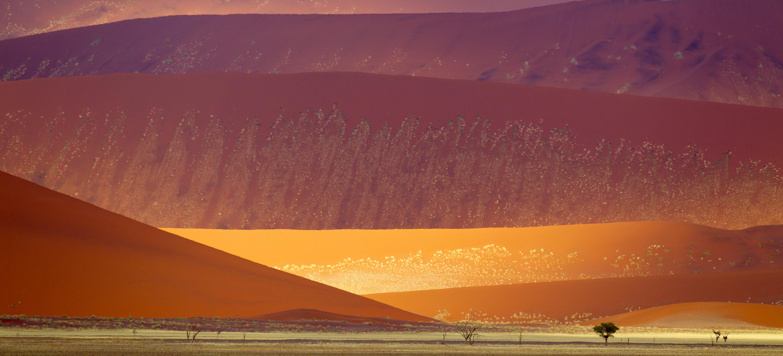 Namib-Naukluft National Park sand dunes, Namibia