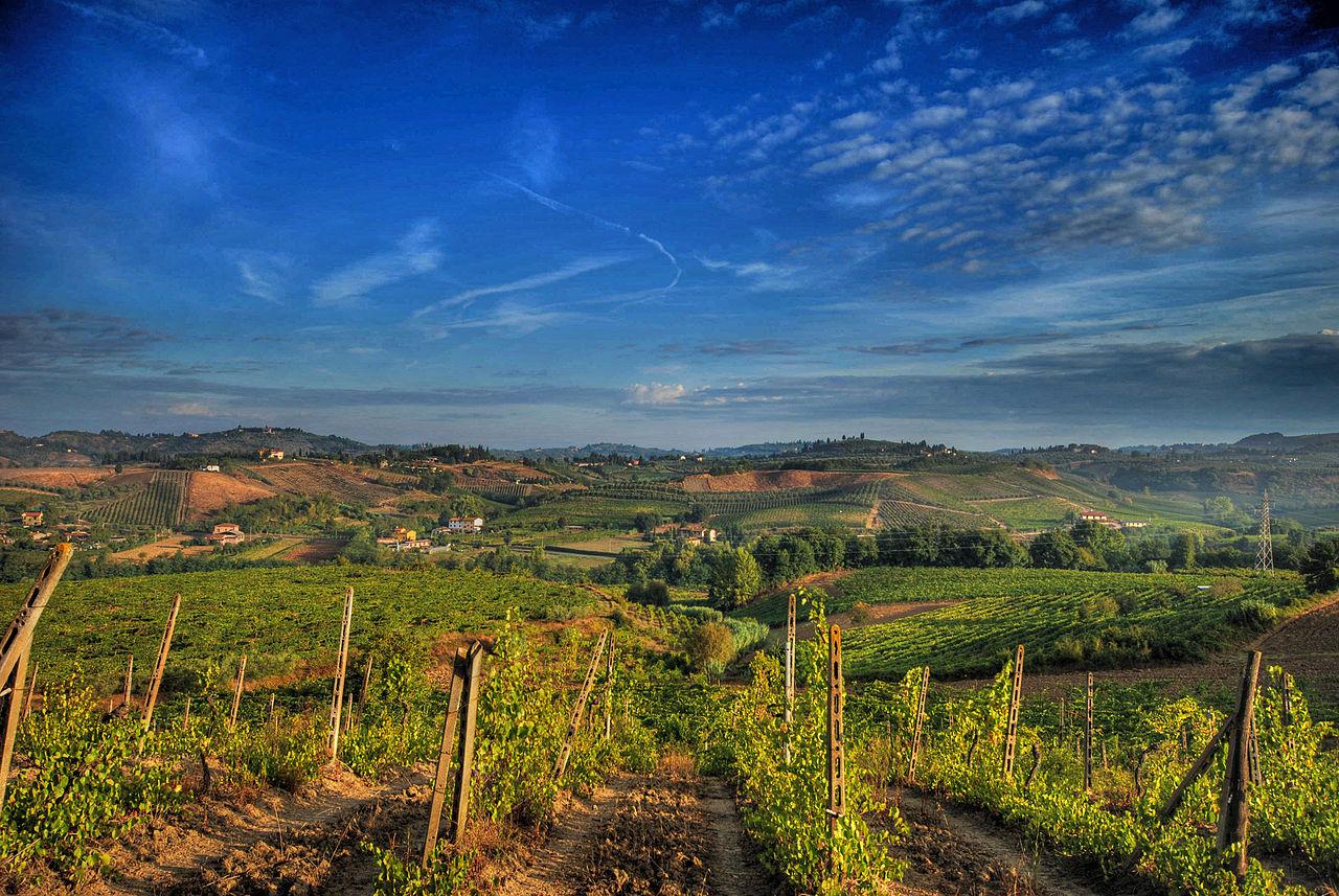Vignoble du chianti, Toscane, Italie