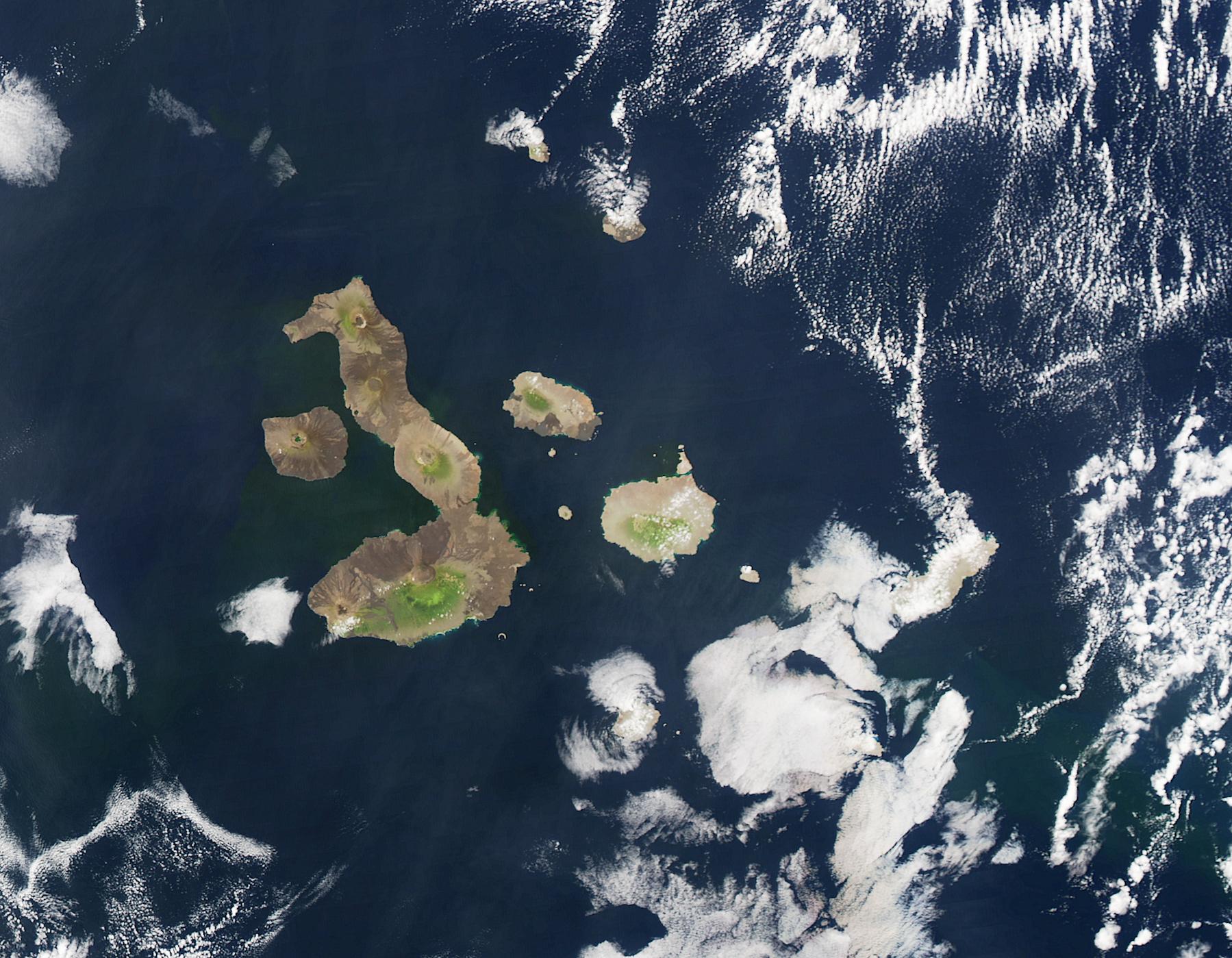 Équateur - Galapagos