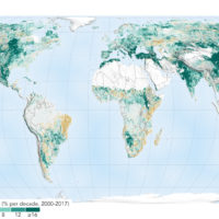 The world is greening since 2000