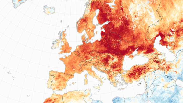 February 2019 was one of the hottest in history in Europe