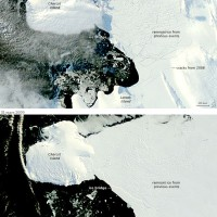 Antarctique – banquise de Wilkins (avril 2009)