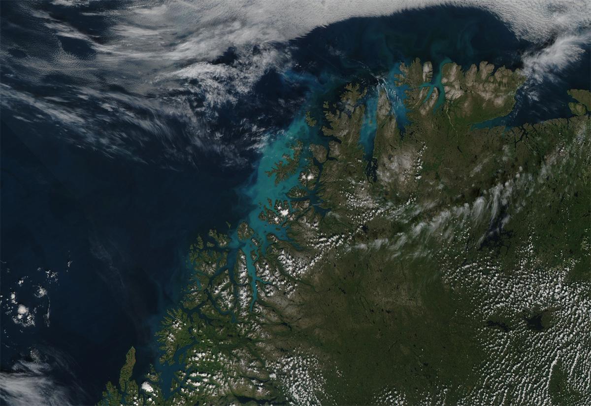 Norvège - Phytoplancton dans l'océan
